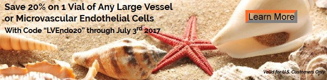 Save 20% on 1 Vial of Any Large Vessel or Microvascular Endothelial Cells