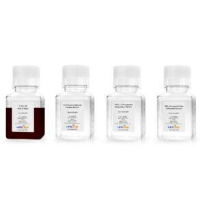 Oil Red O Staining Kit LL-0052
