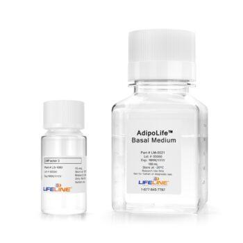 AdipoLife DfKt-2 Adipogenesis Differentiation Medium for Wharton's Jelly and Bone Marrow Mesenchymal Stem Cells