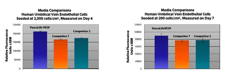 Endothelial Cell Culture Media Comparison