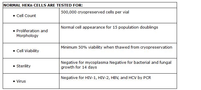 Human Epidermal Keratinocytes Neonatal