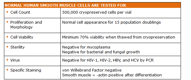 Human Smooth Muscle Cell Quality Testing