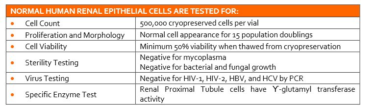 Renal Epithelial Cell Quality Testing