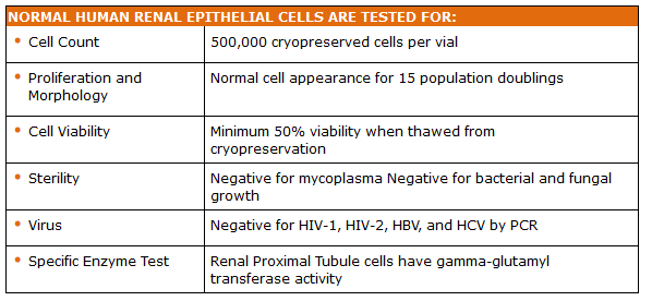 Renal Epithelial Cells Quality Testing