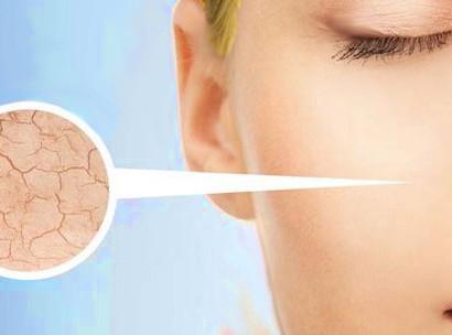melanocyte skin cells