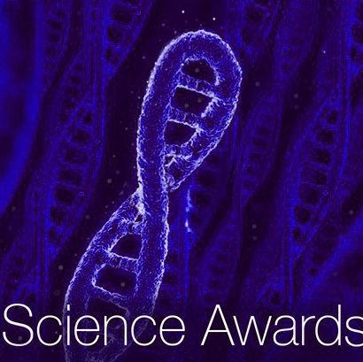 DNA Cells