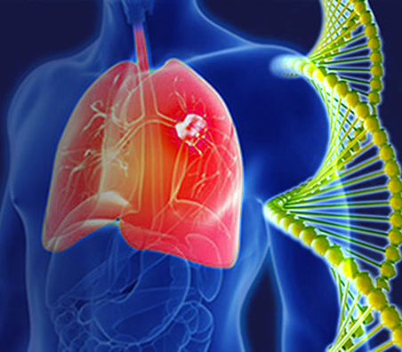 lung research image